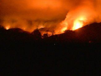 Erdogan_government_criticized_wildfires