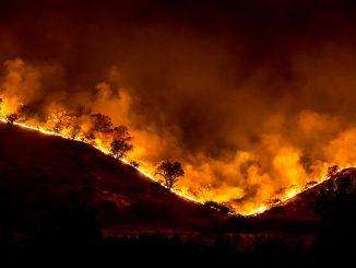 wildfires_turkey